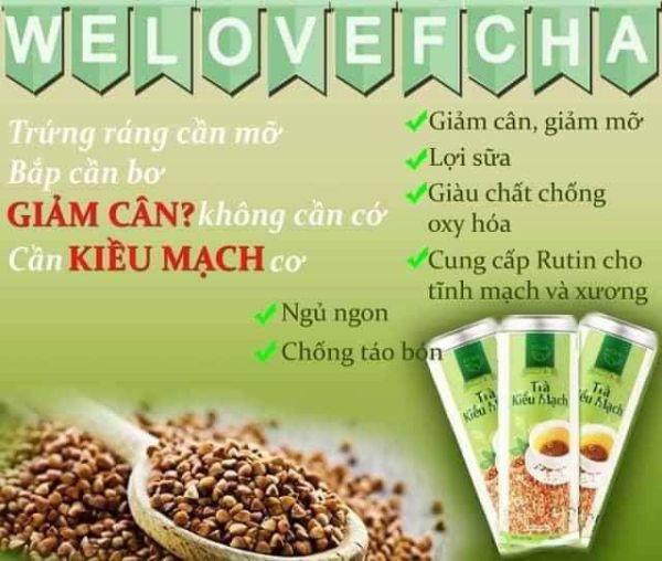 Trà Giảm Cân Kiều mạch Fcha- Hạt trà từ thiên nhiên, an toàn và hiệu quả
