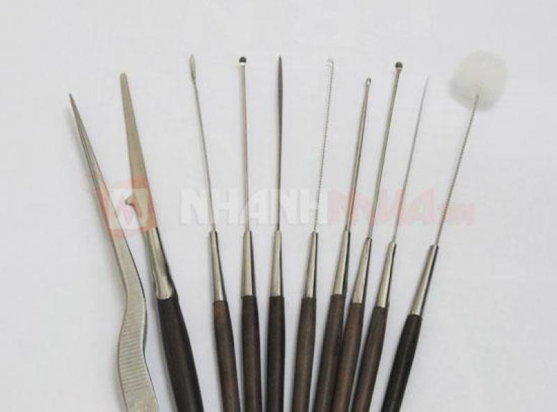 Bộ dụng cụ lấy ráy tai inox chuyên nghiệp 10 món