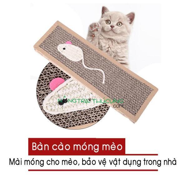 Bàn cào móng cho mèo