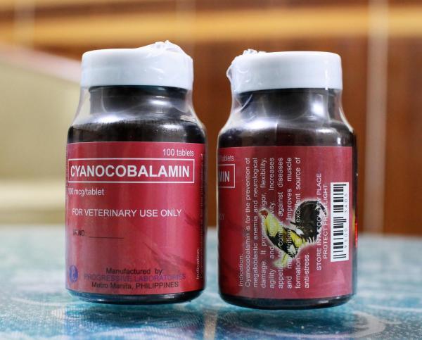 Thuốc Bổ Gà - B12 - Combo 2 Hủ 200 Viên