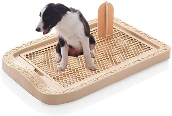 Bộ huấn luyện đi vệ sinh thấm nước cho thú cưng