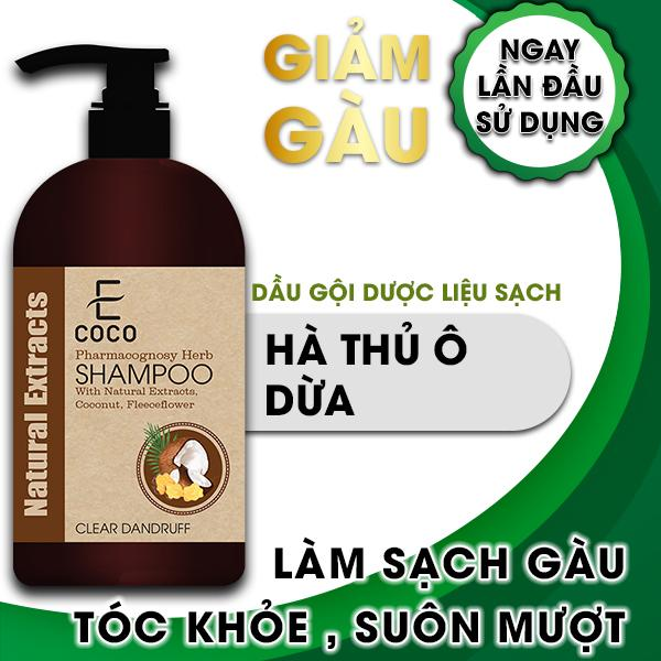 Dầu gội dược liệu sạch gàu Ecoco với chiết xuất dừa, hà thủ ô giá rẻ