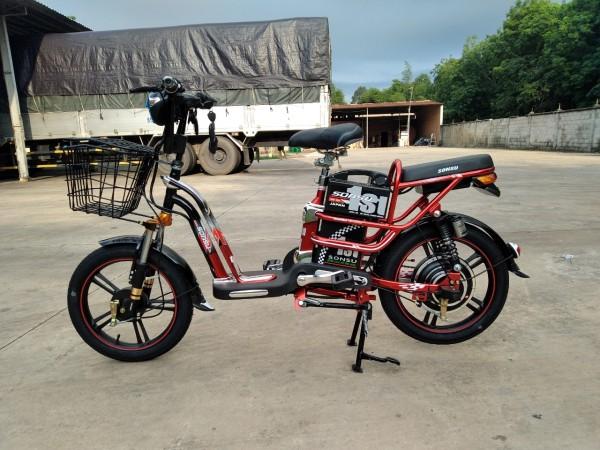 Phân phối Xe đạp điện son su ruby