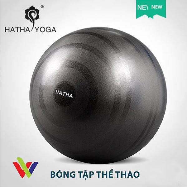 Bảng giá Bóng Tập Thể Thao, Yoga, Fitness, Gym - Màu Đen - 65cm