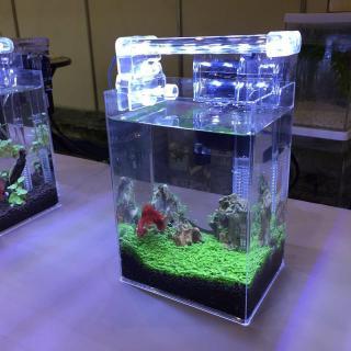 Đèn Led Lắp Cho Bể Cá LED D40, Đèn Siêu Sáng Trang Trí Bể Cá Cảnh, Mẫu Đèn Bể ca Cảnh Đẹp - Thiết Bị Trang Trí Bể Cá Chất Lượng - Giảm Giá Sốc Tới 50% thumbnail