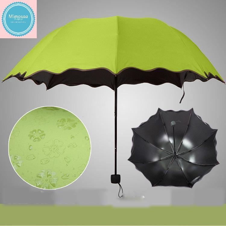 Giá bán Dù, ô, Chiếc dù nở hoa, dù che nắng, dù che mưa họa tiết nở hoa khi trời mưa, thiết kế mới lạ đẹp mắt