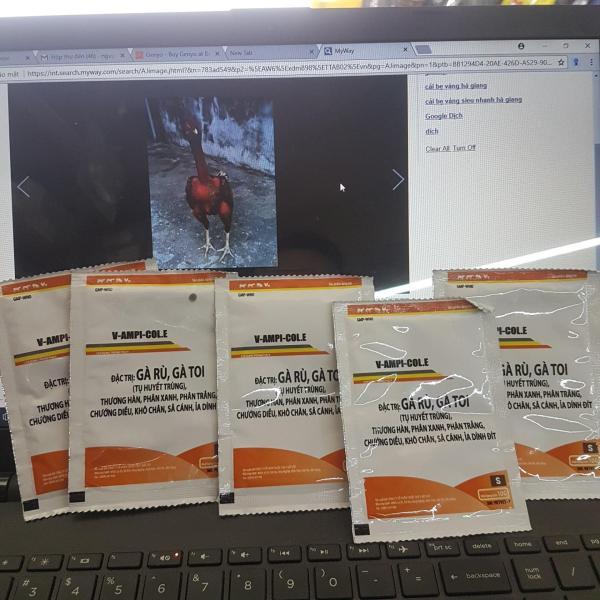 5 gói thuốc phòng trị gà rù gà toi(tụ huyết trùng)