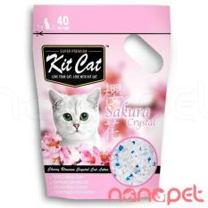 Cat Thủy Tinh Kitcat Hương Sakura Cho Meo Tui 5L Oem Chiết Khấu 50