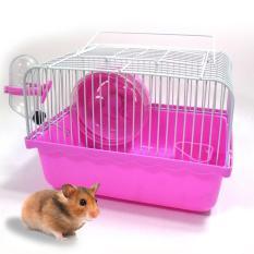 Mua Lồng Chuột Hamster 23X17X17Cm Legaxi Hh10 Legaxi Rẻ