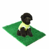 Giá Bán Pet Cat Puppy Dog Training Indoor Potty Synthetic Grass P** Pads For Restroom Intl