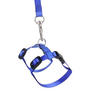 Hình ảnh Pet Cat Rabbit Durable Nylon Outdoor Collar Chest Strap Traction Harness (Blue) - intl