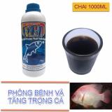 Ôn Tập Thức Ăn Phong Bệnh Va Tăng Trọng Cho Ca Chai 1000Ml