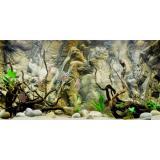 Giá Bán Tranh Phong Nèn 3D Dán Hò Cá Aqua 016 Kt 120 X 60 Cm Trực Tuyến Hồ Chí Minh