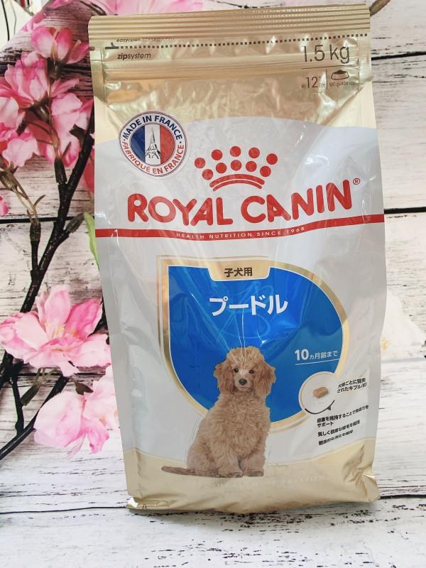 Thức ăn cho chó Royal Canin Poodle Junior 1.5kg