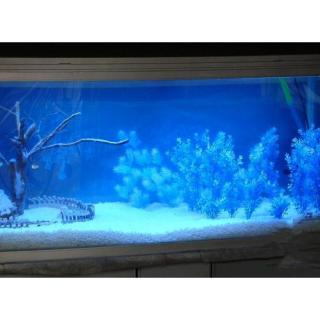 Cát Thạch Anh vật liệu lọc, trang trí bể cá, hồ thủy sinh (túi 200gr) 8