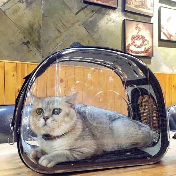 [Size to Chó mèo 8kg] Túi vận chuyển Eva Hàn Quốc trong suốt dành cho thú cưng chó mèo, sản phẩm tốt, chất lượng cao, cam kết như hình