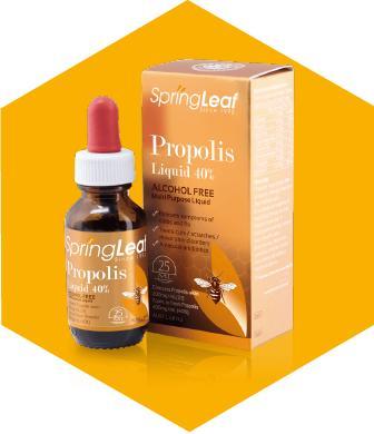 Keo Ong Spring Leaf Propolis 40% Không Cồn - Thực Phẩm Bảo Vệ Sức Khoẻ Đặc Trị Ho, Viêm Họng, Viêm Đường Hô Hấp