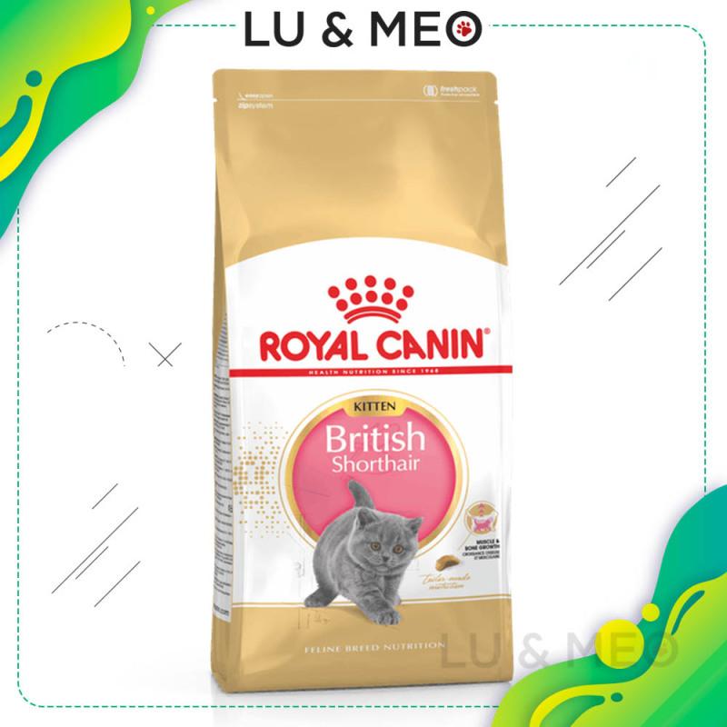 Thức ăn hạt cho mèo con Anh lông ngắn Royal Canin British Shorthair Kitten, 2kg, giàu và phù hợp dinh dưỡng cho mèo Anh