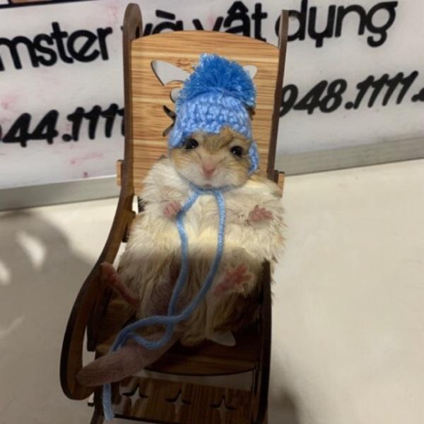 Nón cho hamster - Có dây buộc