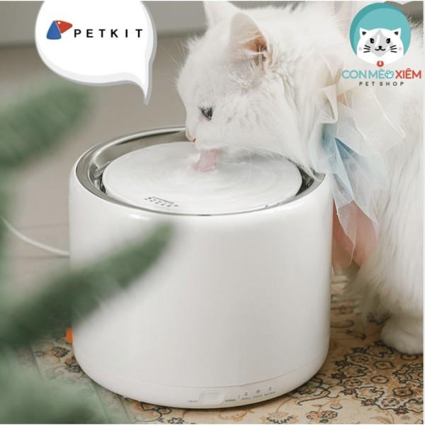 Máy lọc nước PETKIT cho chó mèo tự động EVERSWEET 3- Thiết bị thông minh Con Mèo Xiêm