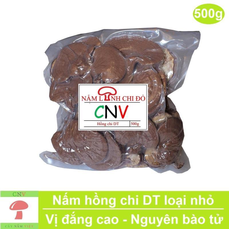 Nấm linh chi đỏ Hồng Chi DT 500g (vị đắng cao) - Cây Nấm Việt cao cấp