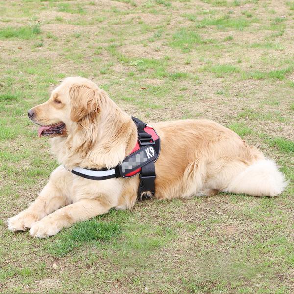 Dây đai đeo ngực cho chó 10-40kg