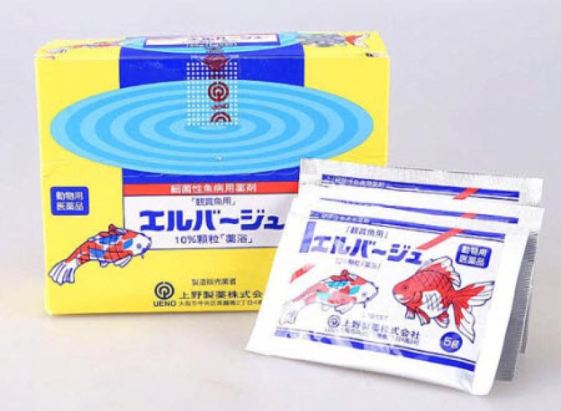 Tetra Nhật Gói 5G - Sản Phẩm Hỗ Trợ Cá Khỏe
