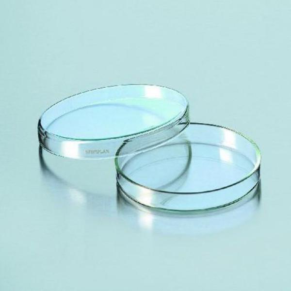 Đĩa petri thủy tinh 90x15mm hàng của Đức