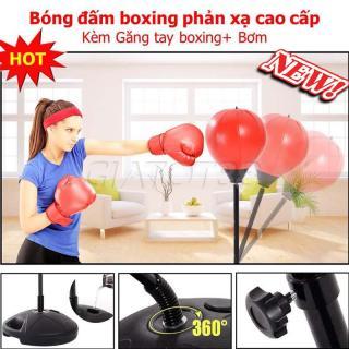 Bóng Đấm Boxing Phản Xạ, Tập Cơ Tay Tại Nhà. Bóng Đấm Boxing Phản Xạ Luyện Tập Phản Xạ, Tốc Độ, Đòn Tay, Giúp Tăng Cường Thể Lực. thumbnail