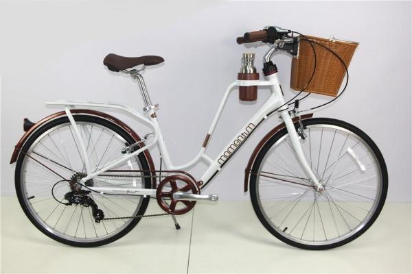 Phân phối Xe đạp thể thao đi phố GIANT INEED LATTE 2019