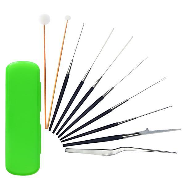 Bộ dụng cụ lấy ráy tai 10 món hộp nhựa giá rẻ