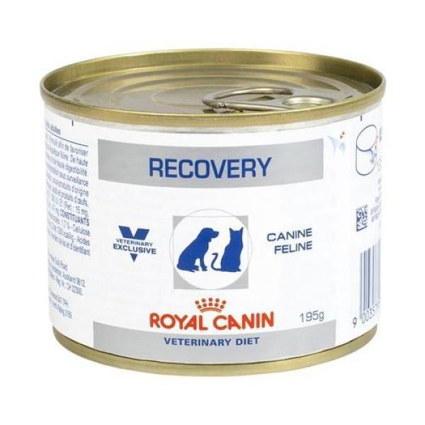 Thức Ăn Pate Phục Hồi Sức Khoẻ Chó Mèo Royal Canin RECOVERY Canine Feline 195g
