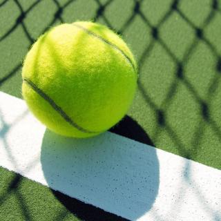 ANGUBA Bóng Tennis Chống Cắn Bằng Cao Su Màu Vàng Huỳnh Quang, Đồ Chơi Cho Chó Cưng Đào Tạo thumbnail