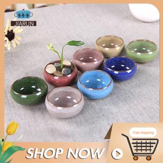 Chậu cây làm bằng gốm sứ với nhiều màu sắc chọn lựa (Sản phẩm không bao gồm cây) - Giới hạn 1 sản phẩm khách hàng thumbnail