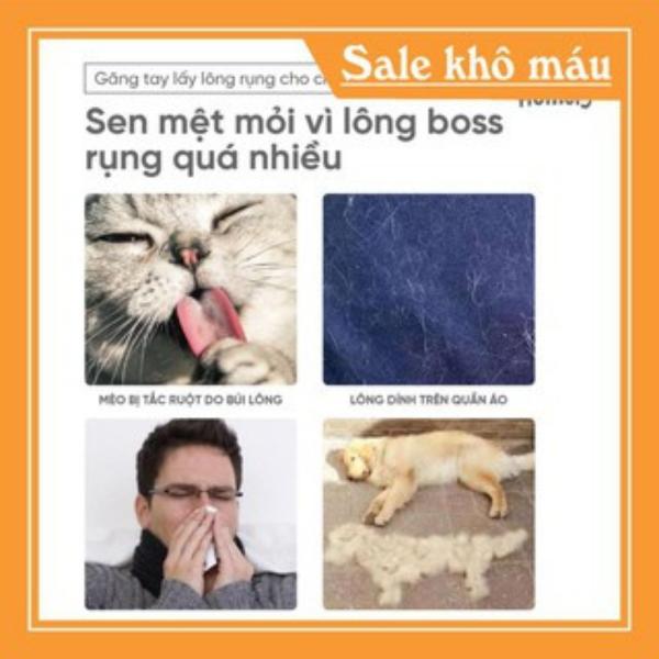Găng Tay Lấy Lông Rụng Cho Chó Mèo