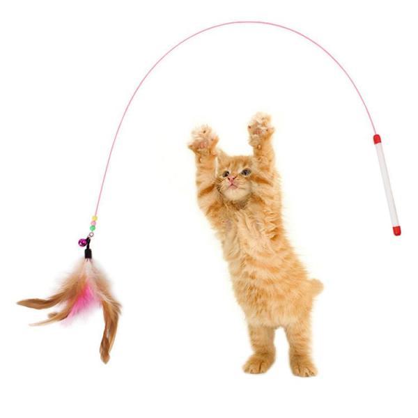 Cần câu trêu mèo đồ chơi cho mèo