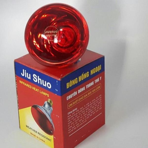 Bóng đèn Hồng ngoại sưởi ấm Thú y  cao cấp 75w + tặng 1 đui sứ
