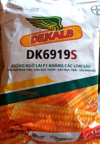 Hạt giống ngô lai F1 kháng các loại sâu DK691 ,   9S 1kg-  Bayer- NGÔ BIẾN ĐỔI GEN