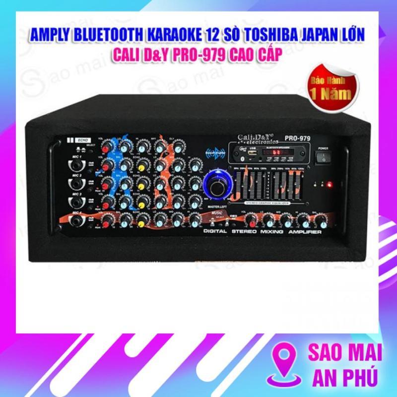Ampli BLUETOOTH karaoke gia đình Cali.D&Y PRO-979