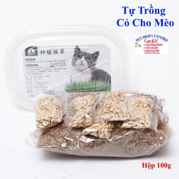 BỘ KIT TỰ TRỒNG CỎ LÚA MẠCH TƯƠI CHO MÈO Giúp kích thích tiêu hóa và Xử lý búi lông trong ruột mèo Hộp 100g