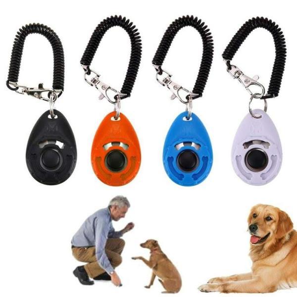 clicker huấn luyện thú cưng