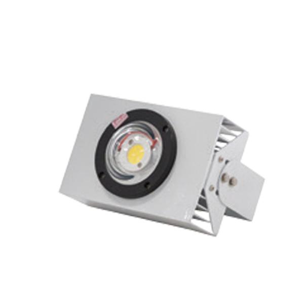 Đèn LED chiếu Boong 50W DCB 01L/50w