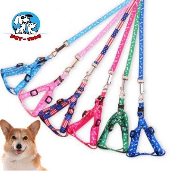 Dây Dắt Chó Mèo Thú Cưng Đi Dạo Nhiều Màu Sắc
