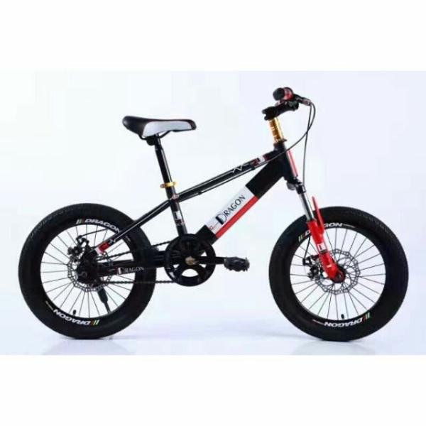 Mua Xe đạp trẻ em Dragon 20/22 dành cho các bé cao từ 1,2 m đến 1 m 6