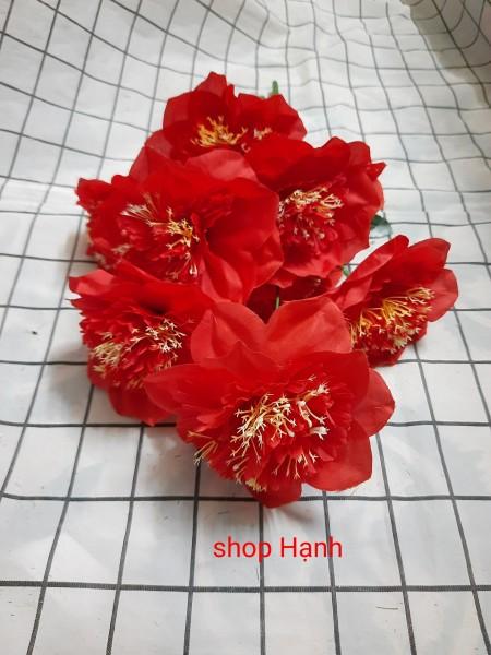 Cành 10 bông hoa thọ