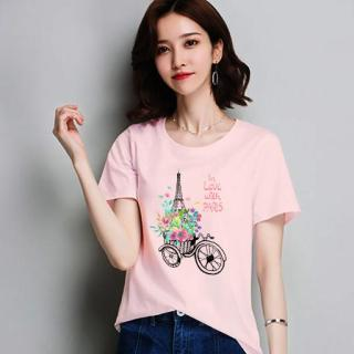 Áo Thun nữ Hàn Quốc EM1137 Thời Trang Elsa thumbnail