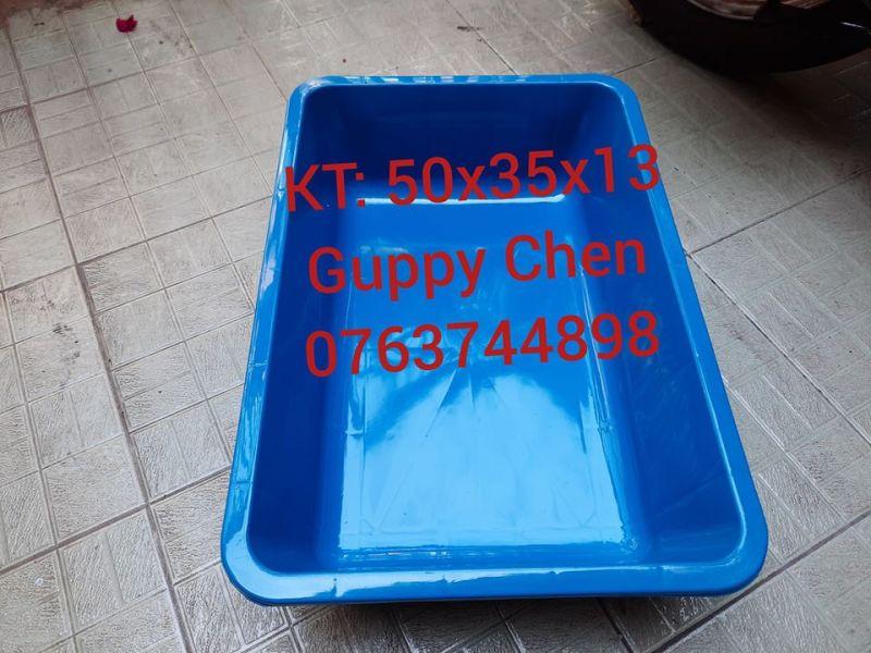 Combo 3 khay nhựa xanh 50cm dùng để nuôi cá