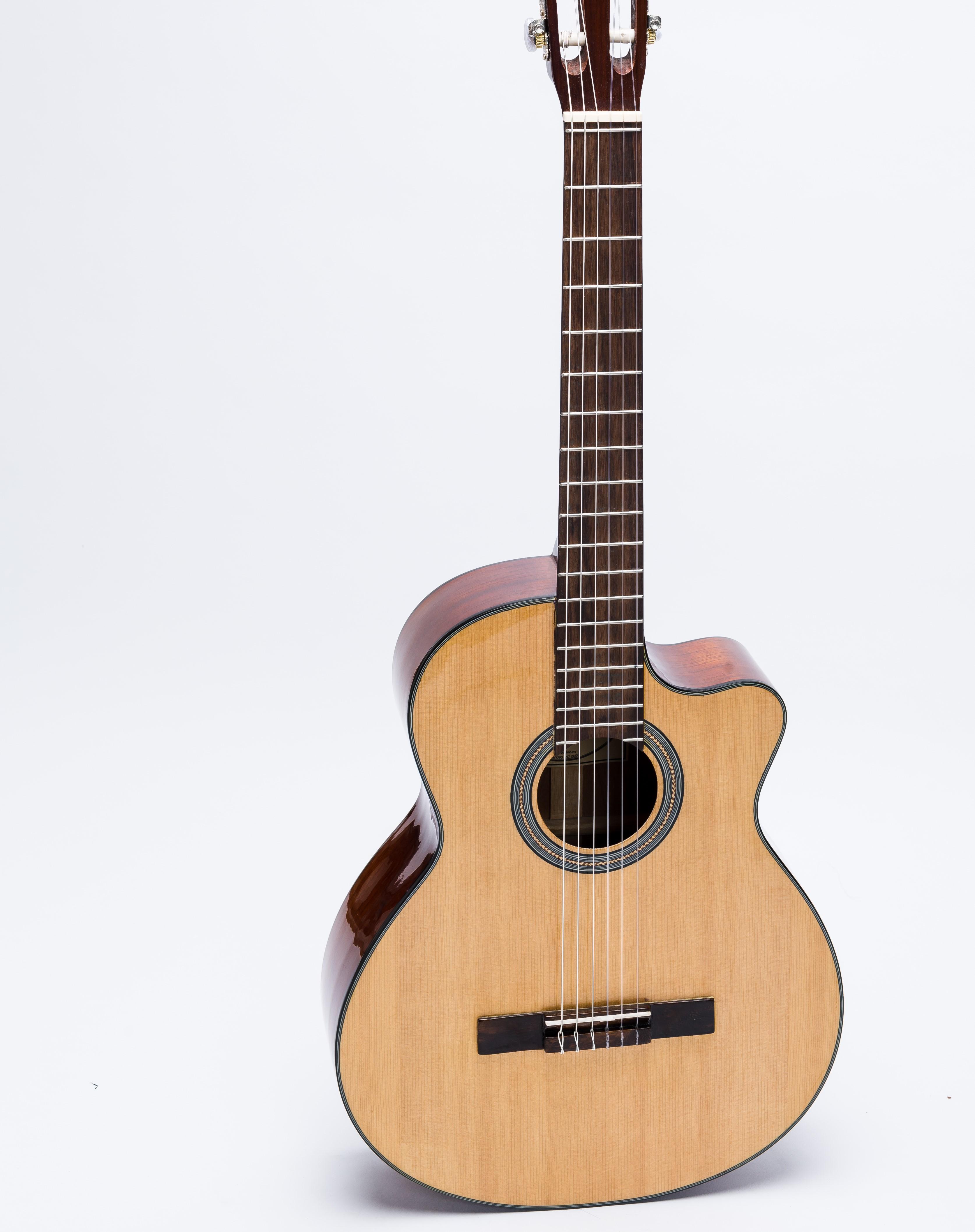Đàn Guitar Classic C-100-J