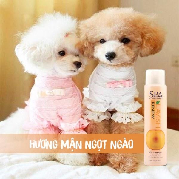 Sữa tắm cho chó phục hồi màu lông Tropiclean Spa Renew 473ml