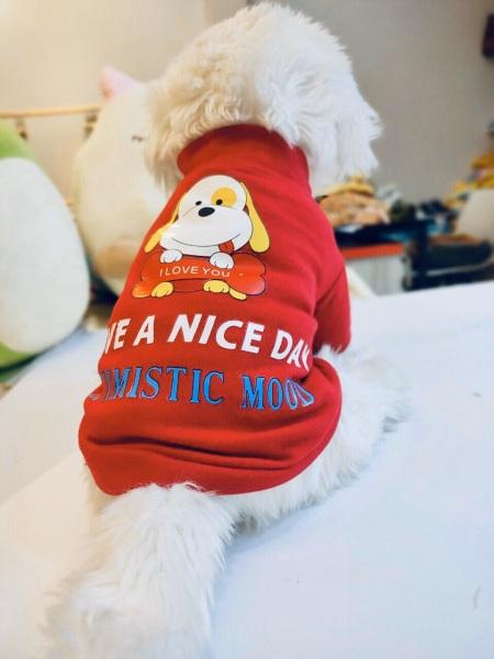 Áo thun đỏ dành cho thú cưng, Quần áo chó mèo LaLi Petfashion